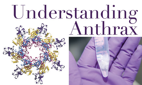 a research on anthrax Anthrax chapter 4 anthrax  , bacterial therapeutics, division of bacteriology, us army medical research institute of infectious  anthrax, 12 a previously.