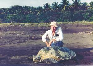 Archie Carr with green turtle at Tortuguero, Costa Rica.