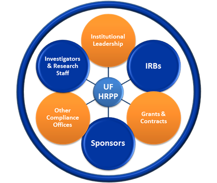 an overview of the office of human research protection A summary or in-depth review of the history of human research ethics, the birth of institutional review boards, and the general structure of an irb request session human research protection office (hrpo orientation.